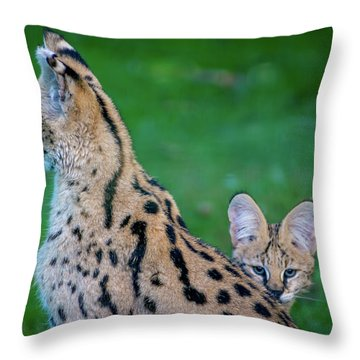 Can You See Me? Throw Pillow