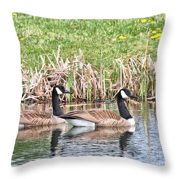 Canada Geese Throw Pillow by Debbie Stahre
