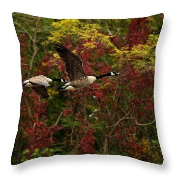Throw Pillow featuring the photograph Canada Geese In Autumn by Angel Cher