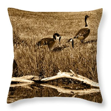 Canada Geese Lakeside Throw Pillow by Kathleen Stephens