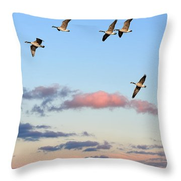 Canada Geese Migration Throw Pillow