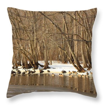 Canada Geese On Concord River Throw Pillow by John Burk