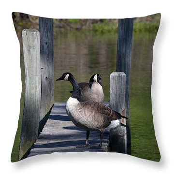 Canada Geese On Dock Throw Pillow by Kathleen Stephens