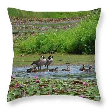 Canada Goose And Family  Throw Pillow