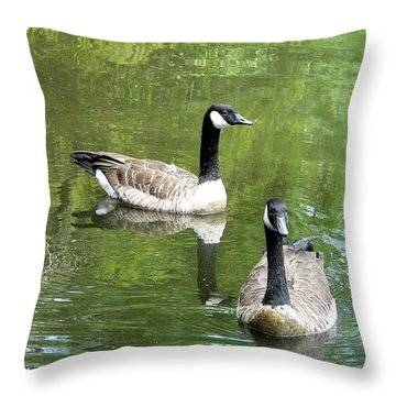 Canada Goose Duo Throw Pillow by Al Powell Photography USA