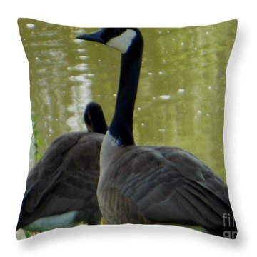 Canada Goose Edge Of Pond Throw Pillow