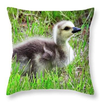 Canada Goose Gosling Throw Pillow