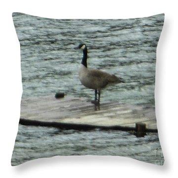 Canada Goose Lake Dock Throw Pillow