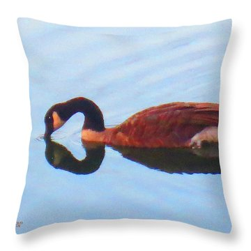 Canada Goose On Clear Lake Throw Pillow