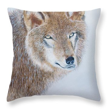 Canada Grey Wolf. Throw Pillow