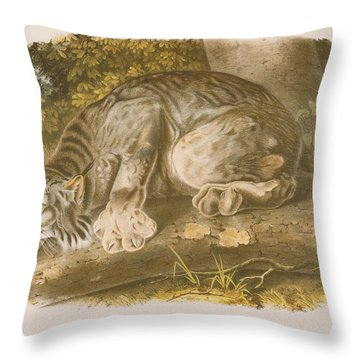 Canada Lynx Throw Pillow by John James Audubon