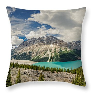 Canadian Beauty 3 Throw Pillow by Thomas Born