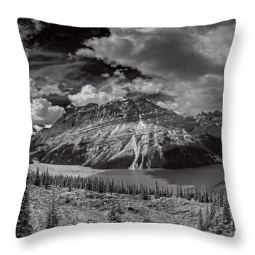 Canadian Beauty 4 Throw Pillow by Thomas Born
