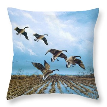 Canadian Cold Front Throw Pillow