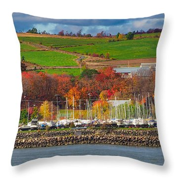 Canadian Colors Throw Pillow