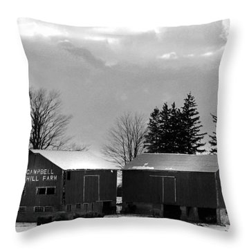 Canadian Farm Throw Pillow by Anthony Jones