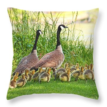 Canadian Geese Family Throw Pillow by Jennie Marie Schell
