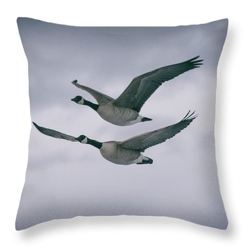 Canadian Geese In Flight Throw Pillow by Jason Coward