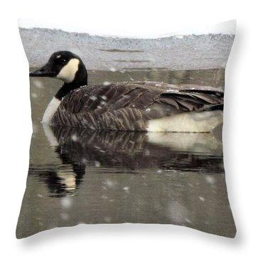 Canadian Goose In Michigan Throw Pillow