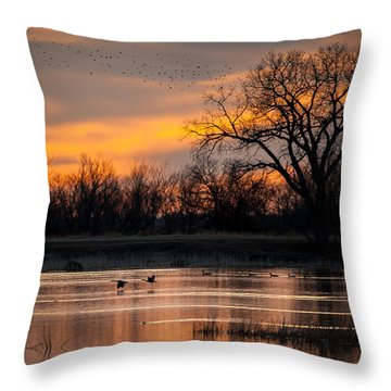 Throw Pillow featuring the photograph Canadians Under The Radar by Jeff Phillippi