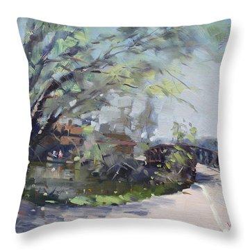 Canal At Niawanda Park Throw Pillow