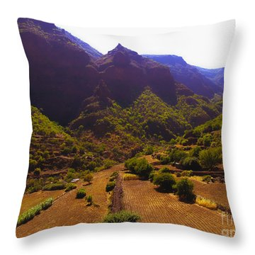 Canarian Agriculture Throw Pillow by Andrew Middleton
