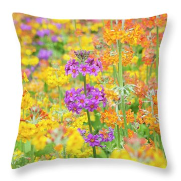 Candelabra Primula Flowers Throw Pillow