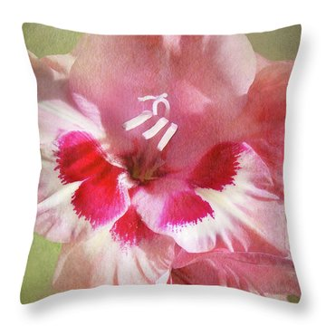 Candy Cane Gladiola Throw Pillow