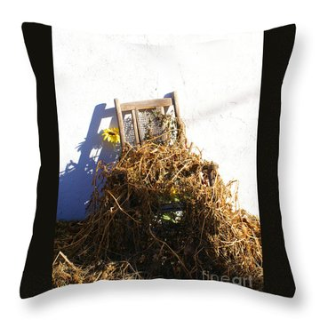 Cane Back Chair And Sunflower Throw Pillow