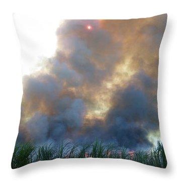 Cane Corona I Throw Pillow by Alexander Van Berg