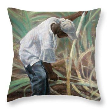Cane Field Throw Pillow