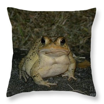 Throw Pillow featuring the photograph Cane Toad by Terri Mills
