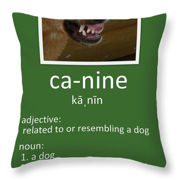 Canine Poster Throw Pillow