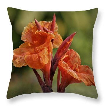 Canna Lily 2945_3 Throw Pillow