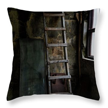 Cannery Ladder Throw Pillow