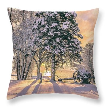 Cannon By The Lake Throw Pillow