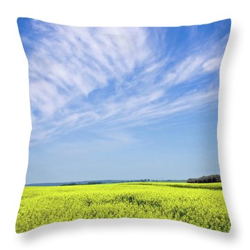 Canola Blue Throw Pillow by Keith Armstrong
