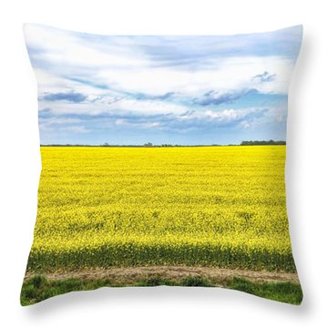 Canola Field - Photography Throw Pillow by Ann Powell