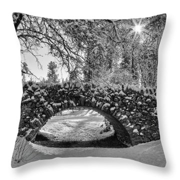 Canon Hill Park Winter - Black And White Throw Pillow