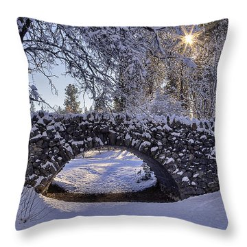 Cannon Hill Park Winter Throw Pillow