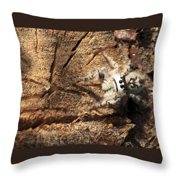 Canopy Jumping Spider Throw Pillow