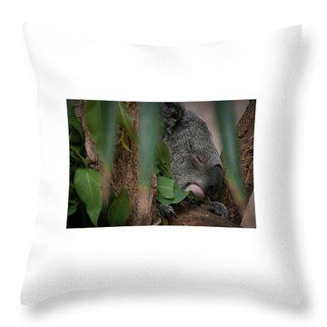 Canopy Nap Throw Pillow