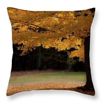 Canopy Of Autumn Gold Throw Pillow