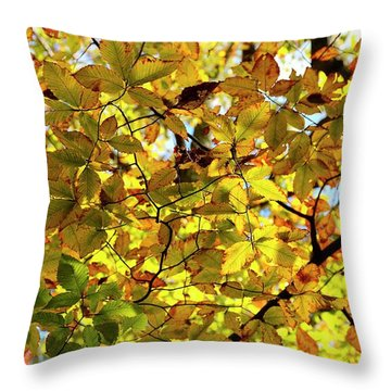 Throw Pillow featuring the photograph Canopy Of Autumn Leaves  by Angie Tirado