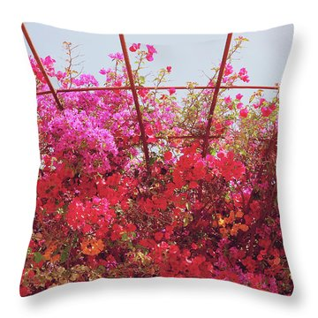 Canopy Of Color- Photography By Linda Woods Throw Pillow