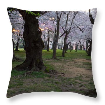 Canopy Of Pink 8x10 Throw Pillow