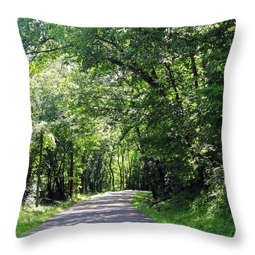 Throw Pillow featuring the photograph Canopy Of Trees by Angela Murdock