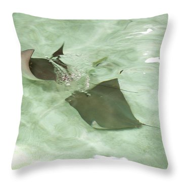 Throw Pillow featuring the photograph Can't Catch Me by Carol Lynn Coronios