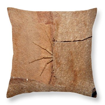 Can't See Me Throw Pillow by Lynda Dawson-Youngclaus