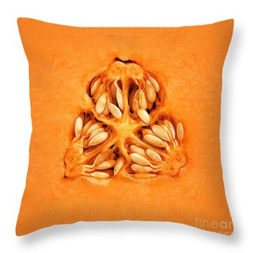 Cantaloupe Melon Inside Throw Pillow